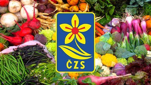Výstava ovoce, zeleniny, květin, výrobků a výpěstků