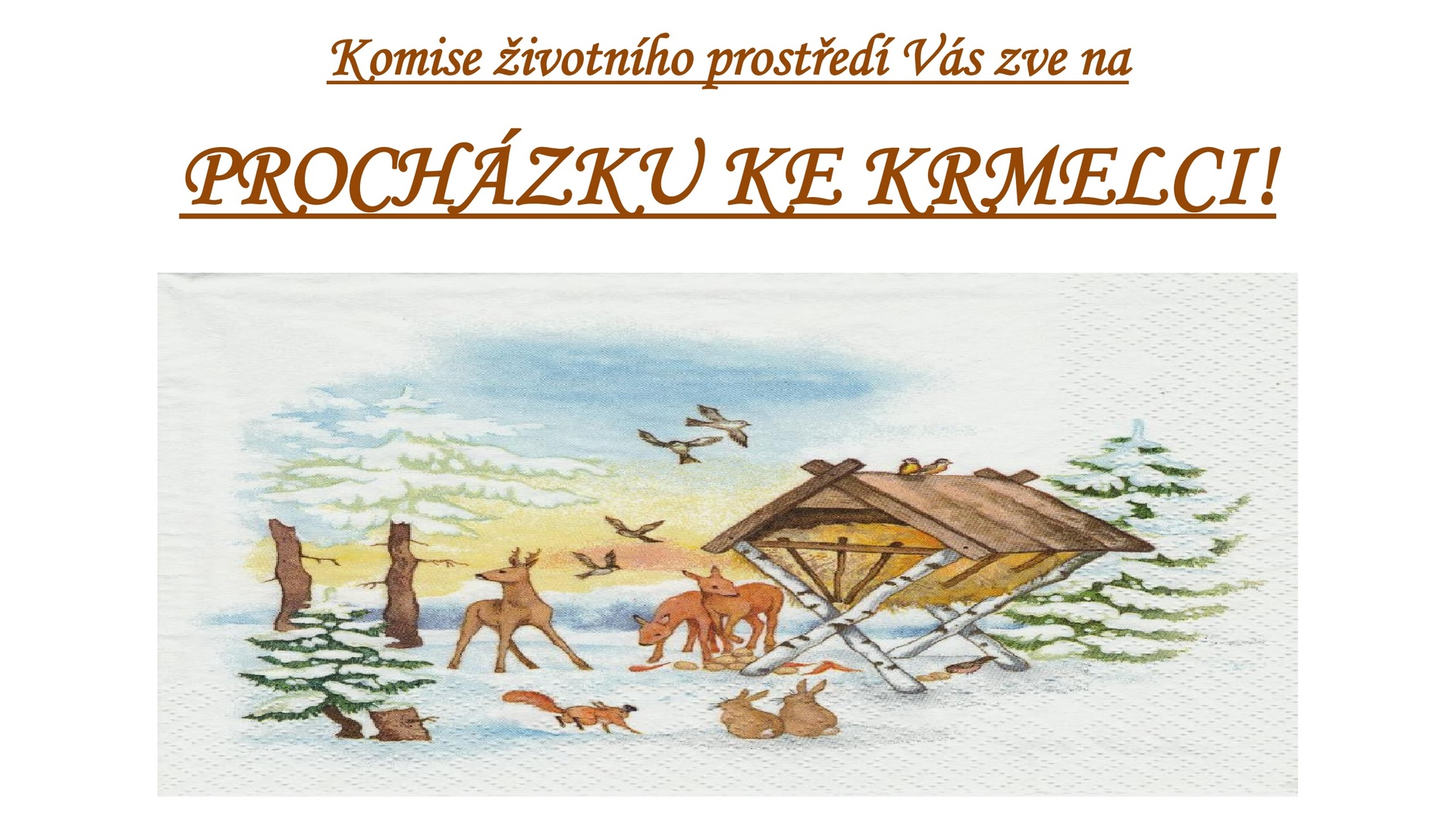 Archiv obce - Procházka ke krmelci - plakát